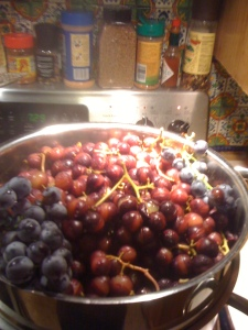 adding more grapes (the redder ones are the ones already cooking down)